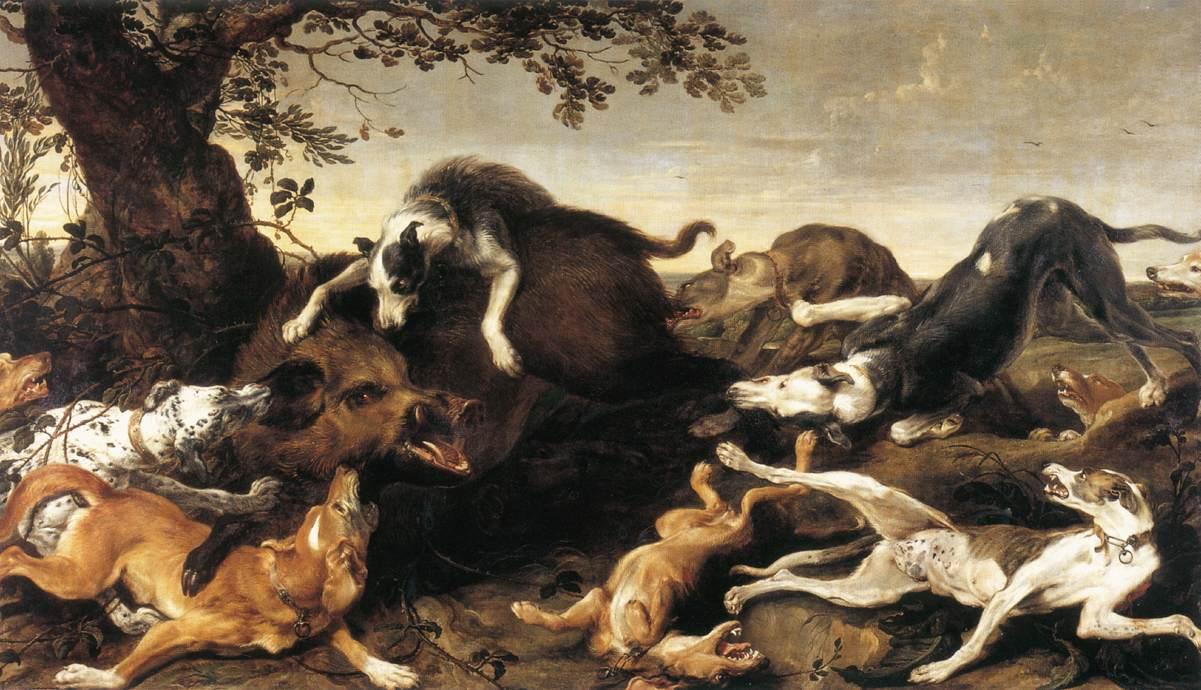 jagt på vildsvin